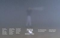 """Projekt """"Pacha"""" - Bild der Abschlusspräsentation"""